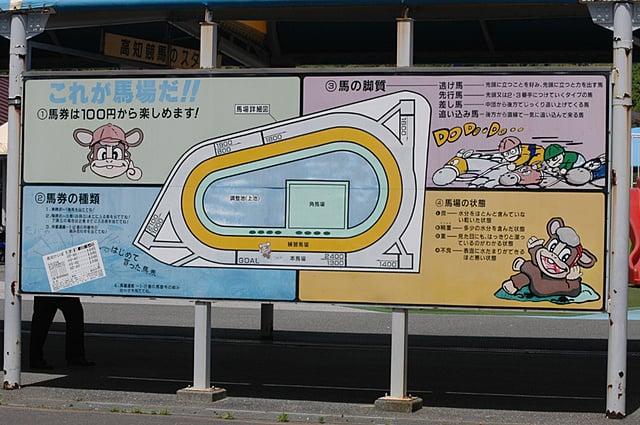 予想 高知 競馬 2021/05/30 高知競馬